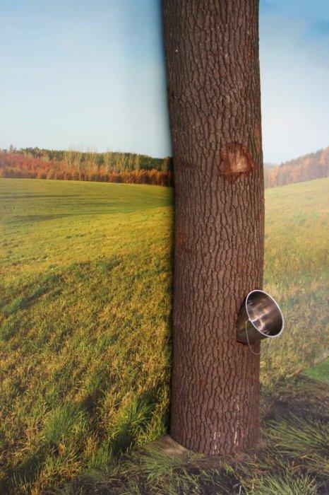 Baum Urinal Bedruckt FOTOBODEN