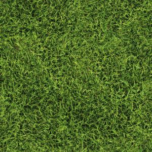 Vinylboden Rasen Design Bodenbelag
