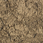 vinylboden lehm