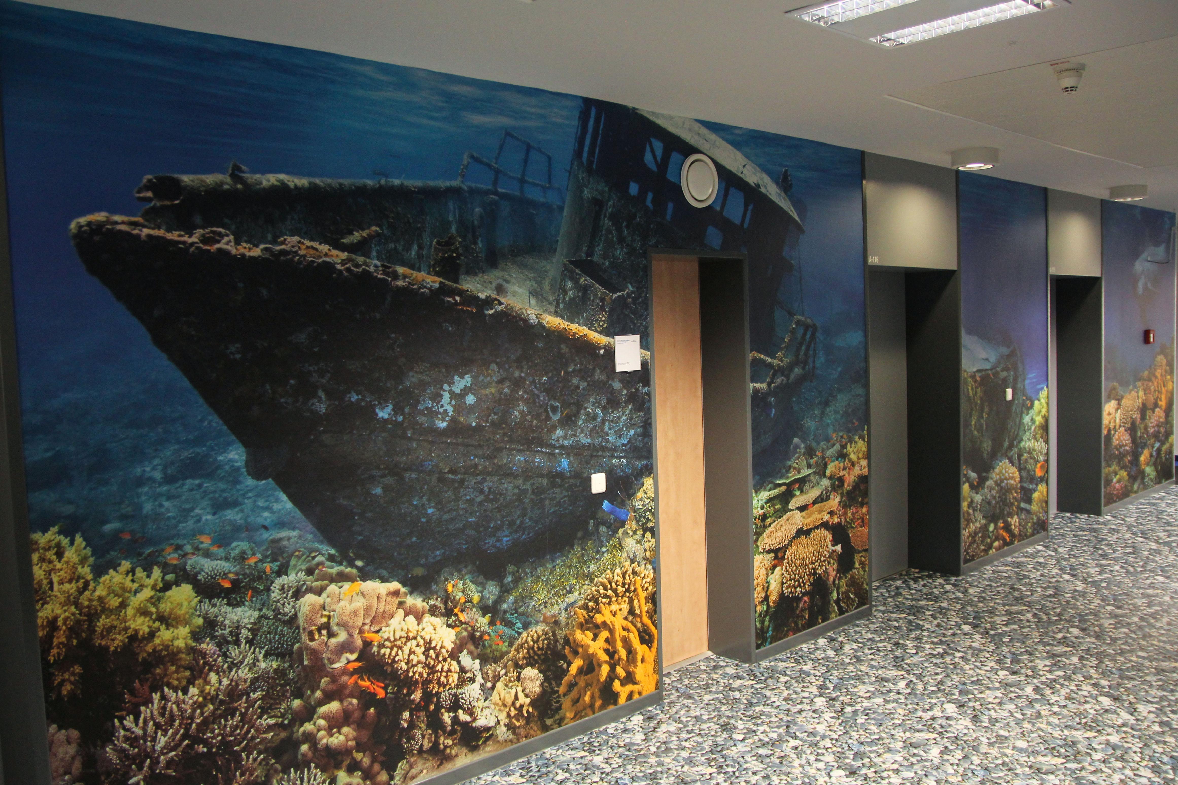 Fototapete Unterwasserwelt : Unterwasserwelt. Boden und W?nde sind mit Fotoboden gestaltet worden
