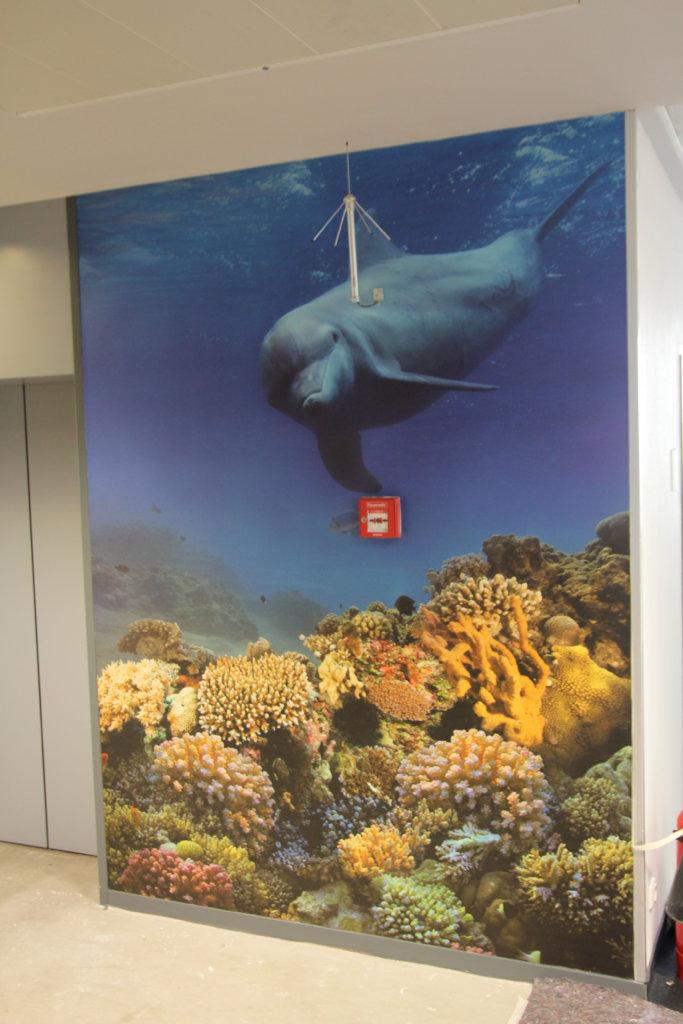 Wandtatoo Fotoboden Aquarium