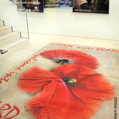 Ausstellung Museum Raumkonzept