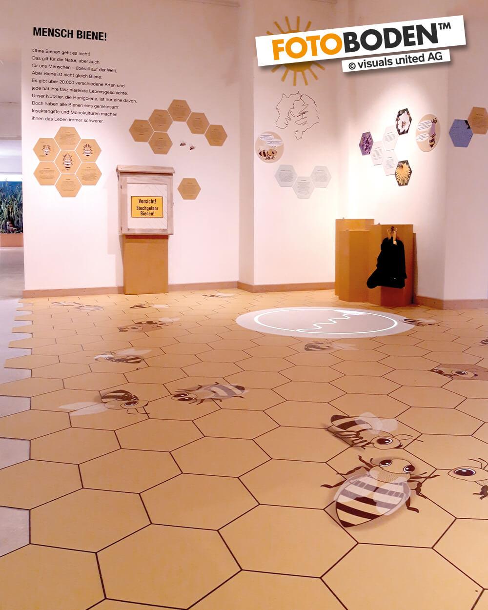 FOTOBODEN™ individuell bedruckt im Naturkundemuseum Potsdam. Illustrierte Bieenen auf Bienenwaben.